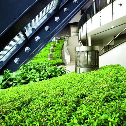 argile expansée jardin